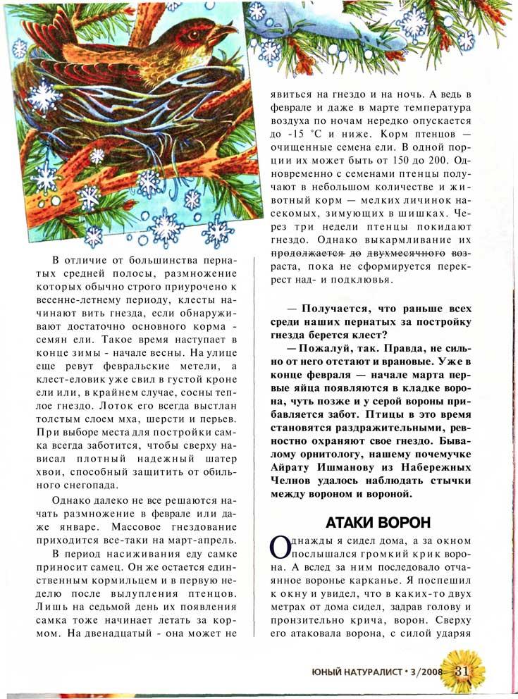 Рассказ про клестов. Оригинальный текст представлен внизу страницы.